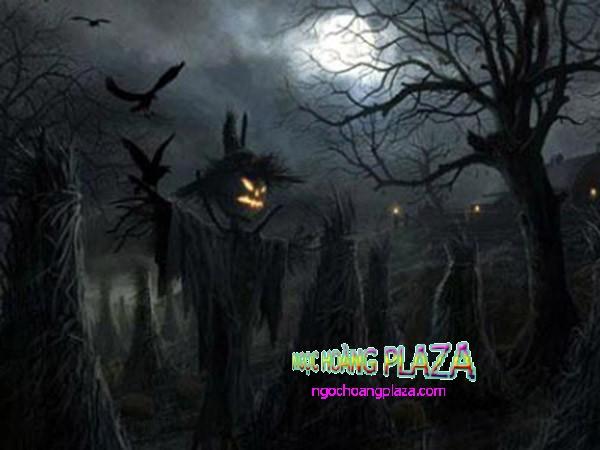 Lễ hội halloween là gì
